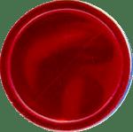 Schnapparmbänder Lagerfarbe 31
