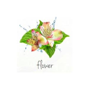 Lufterfrischer bedrucken Blumen