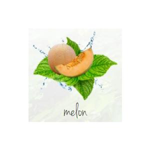 Lufterfrischer bedrucken Melone