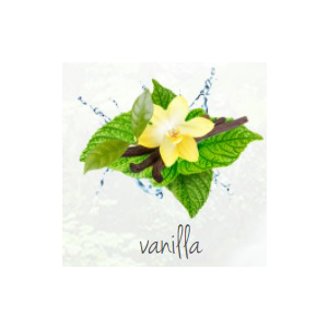 Lufterfrischer bedrucken Vanille