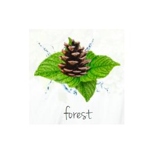 Lufterfrischer bedrucken Wald